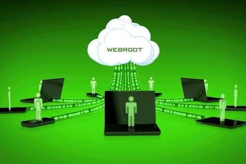 Антивирус Webroot «сошел сума»